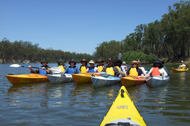 murray river guided kayak tours
